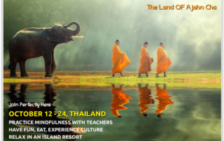 Thailand, Ajahn Cha, Monks & Elephants