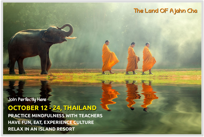 Thailand, Ajahn Cha, Monks & Elephants